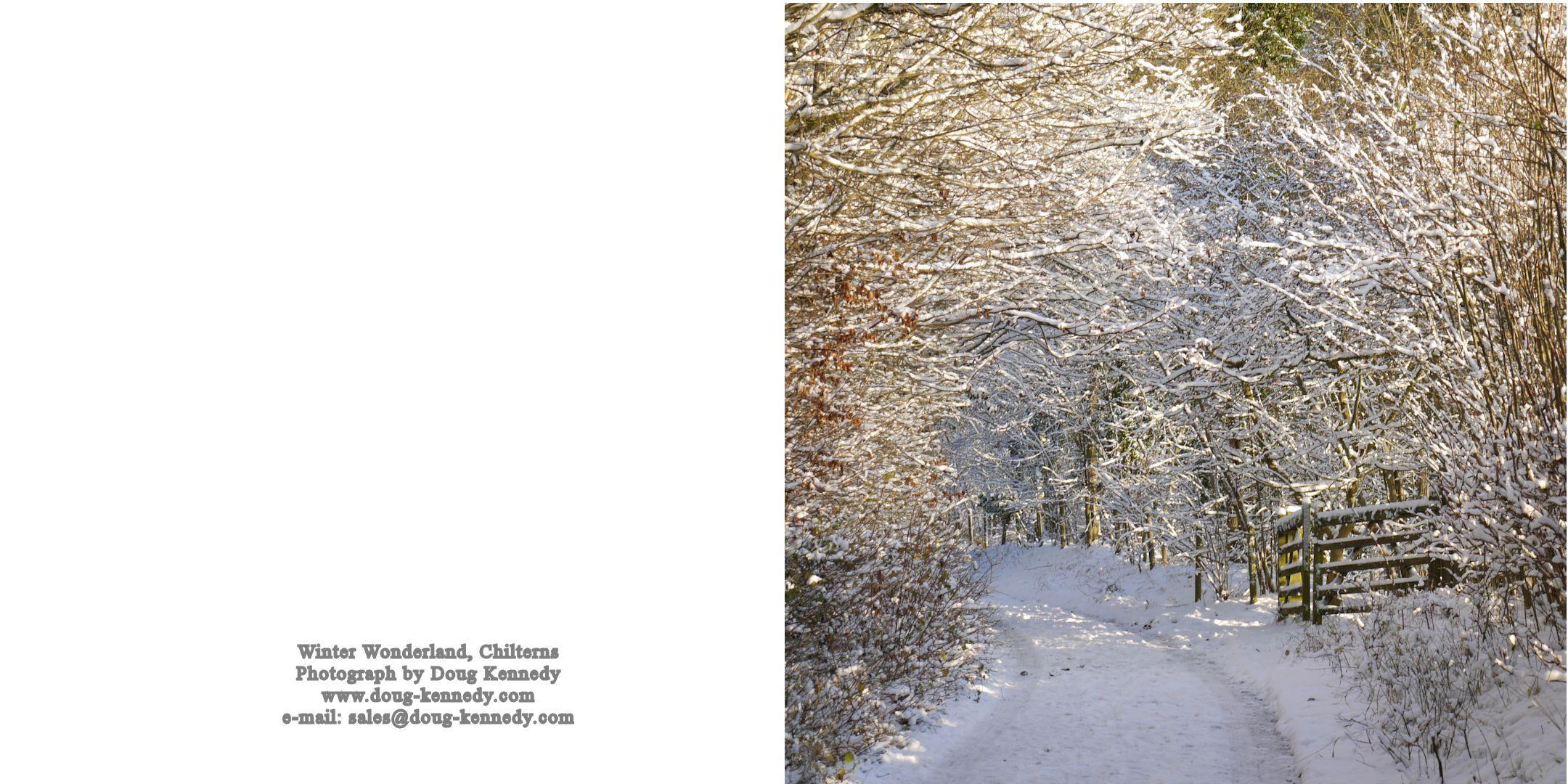 Snowy Lane 2