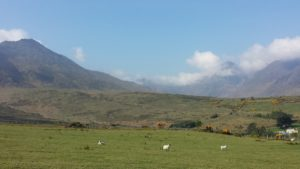 The Reeks from start of walk