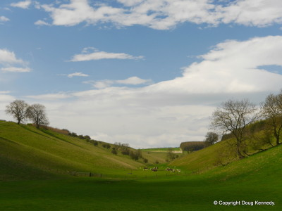 Thixendale 5