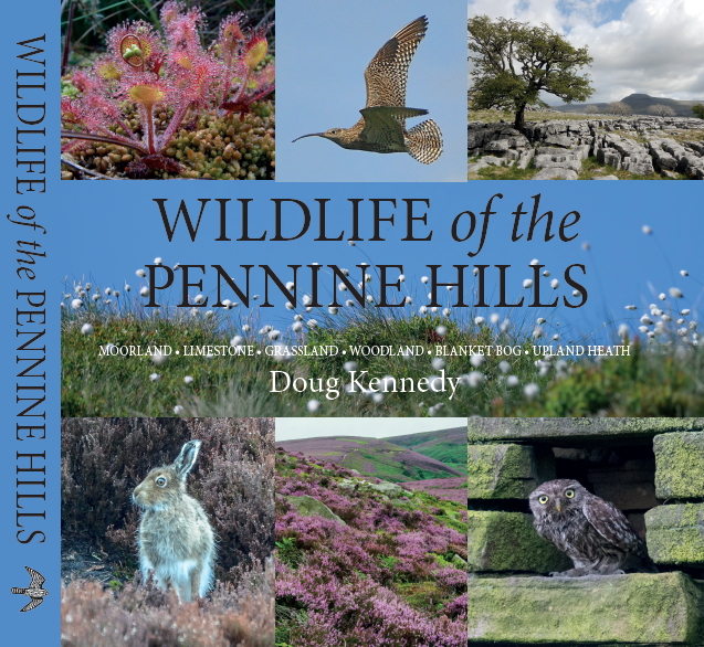 Wildlife of the Pennine Hills